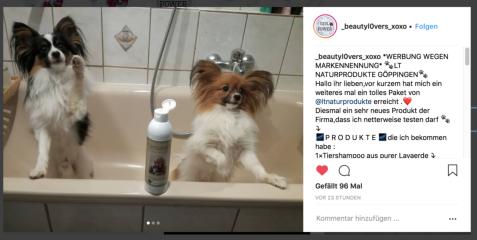 Unser Tiershampoo im Test
